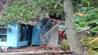 Rusak, Rumah Warga di Pangandaran Rusak Tertimpa Pohon, SEPUTAR PANGANDARAN